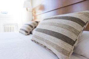 פשפשים במיטה